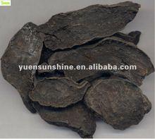 Polygonum Multiflorum Thunb. Extract (10:1/20:1)