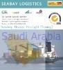 Storaging Shipping from Guangdong to Saudi Arabia