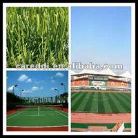 2012 Best football grass