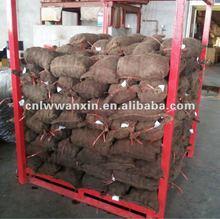 5kg gunny bag fresh chestnut