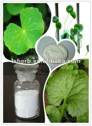 100% Asiaticoside Extract,Gotu Kola Extract,Centella asiatica extract
