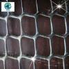 PE/PP plastic mesh for craft