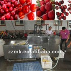 multifunction fruit stone removing machine