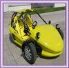 [Ali Brothers]Amusement Park 250cc go kart