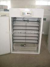Small capacity egg incubator