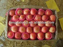 Chinese Fresh Organic Fuji Apple