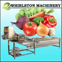 automatic fruit and vegetable/apple/carrot/celery washg machine
