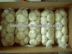 2012 chinese normal white fresh garlic price
