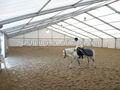 Abrigo tenda coberto arena para passeios a cavalo salão