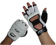 Taekwondo Gloves/karate glove