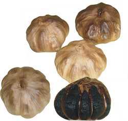 Health food Aged Black Garlic