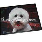 waterproof pet mat