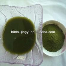 China origin Organic wheat grass extract juice powder