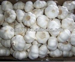 Bulk pickled garlic