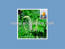 High quality Black Cohosh P.E.(extract) with Triterpene