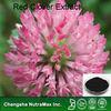 Trifolium pretense L extract (Case#:120-546)