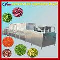 فواكه وخضروات الكرفس يترك ماكينات تصنيع dehydrator