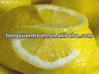 fresh China lemon for sale