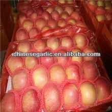2012 Chinese fresh Red Fuji Apple