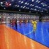 Professional Plain Pattern Futsal Court Flooring