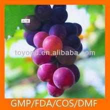 grape seeds for sale