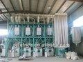molino de molienda de catálogo miling harina máquina de nuevos negocios de cuatro de trigo de molienda de la planta