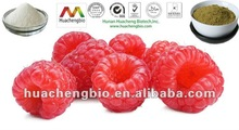 100% Natural Red Raspberry (Rubus idaeus) Extract