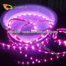12v 30led/m epistar chip 2 year warranty 2012 hot fashionable led strip