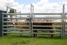 sheep panel enclosures