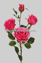 pink rose 27661H