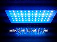 aqua illumination led lampe 120w diy leds for reef aquariums 3w led aquarium light 460nmblue 20000k