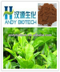 Pure Natural Plant Extract Green Tea P.E. 95% Polyphenols, 45% EGCG, 6-13% Caffeine