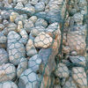 Maccaferri Gabion/Gabion Basket Retaining Wall/ Rock Mattresses
