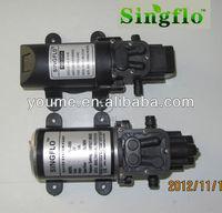 Singflo bomba water/bombas de agua/dc bomba