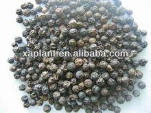Best price Pure black pepper powder price