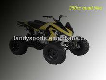 4 wheeler atv/automatic quad bikes for sale /cheap atv (LD-ATV312-1)