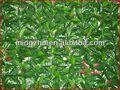 2013 nueva Artificial valla del jardín valla de jardinería árbol seco para la decoración
