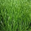 2012 Latest Decorative Plastic Artificial Grass