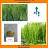 White Willow Bark extract salicin powder herbal extract powder