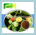 100% natural withania somnifera extrato/ginseng indiano/veneno groselha para nutritonal suplemento