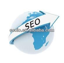 top 10 ranking SEO service, SEO google