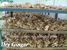 """2013 buyer of dry ginger"""
