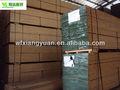 travi in legno lamellare per la casa framing constrcution
