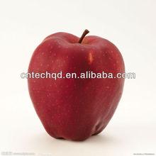 fresh fruits suppliers