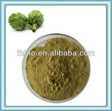 Organic Artichoke Powder for Nutrition Supplement