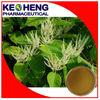 Polygonum Cuspidatum Extract 98% Resveratrol Bulk Powder