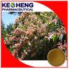 Natural polygonum cuspidatum resveratrol botanical extract