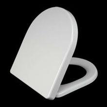 flushable toilet seat A212