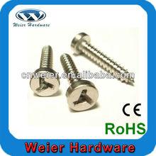 Plain Stainless steel security screws