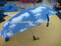 Umbrella in Blue Sky & White Clouds Patterns-30